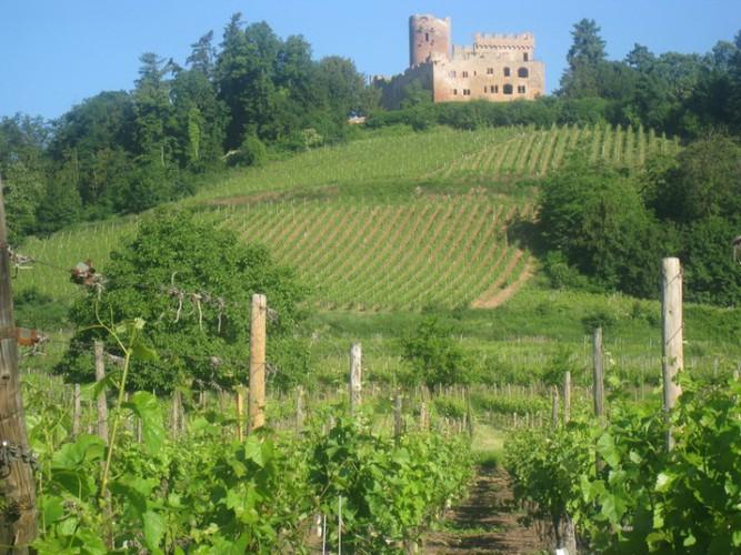 chateau kintzheim 3