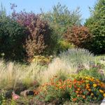 jardin en centre alsace près de Colmar