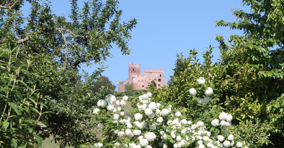 chateau kintzheim maison des épices